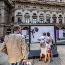 Návštěvníci Zlaté Prahy